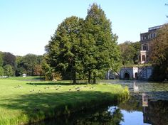 Ooh and having a walk on Landgoed Elswout...an estate nearby...