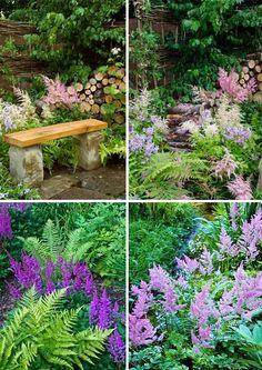 Blog o plánování a realizování vysněné zahrady. Plants, Garden