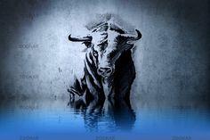 Tattoo's For > Spanish Bull Tattoo Designs