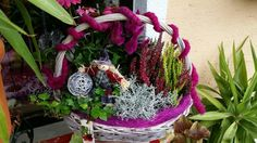 Christmas Wreaths, Holiday Decor, Plants, Home Decor, Photo Illustration, Christmas Swags, Homemade Home Decor, Holiday Burlap Wreath, Plant