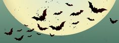 5 Free HQ Halloween Facebook Cover Photos