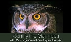 Articles by grade level and lexile level to teach Main Idea! K-12