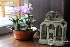 Decorar a sala de estar com gaiola. Um charme para receber bem! Por Patrícia Junqueira http://www.patriciajunqueira.com.br