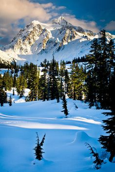 ✯ North Cascades Winter