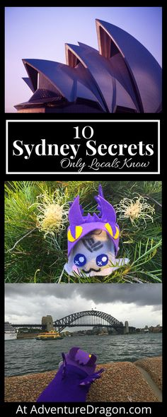 Sydney secrets from a local, Sydney travel guide, Sydney itinerary, The Sydney Opera House is not white – 10 Sydney Secrets Known Only by Locals ( plus a one day travel itinerary )