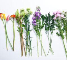 How to: two arrangements with one bouquet