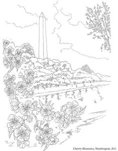 Washington DC USA Coloring Page Inkspired Musings Cherry Blossoms For Spring