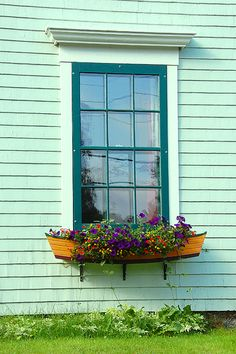Dory Window Box--I love this so much! hey- could use many different ideas like this-