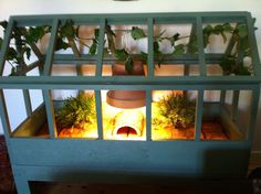 ♥ Pet Turtle ♥  Homemade turtoise habitat