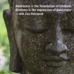 awareness is the foundation of kindness; kindness is the expression of awareness