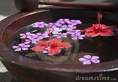 Floating flowers in bowl Floating Flowers, Flower Bowl, Flower Arrangements, Bowls, Centerpieces, Household, Stock Photos, Google Search, Image