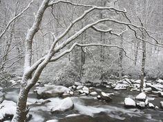 Winter in Tennessee