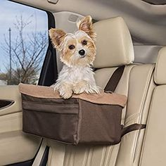 Small Dog Car Seat, Dog Car Seats, Best Small Dogs, Best Dogs, Pet Booster Seat, Pet Gear, Pet Carriers, Dog Harness, Your Dog