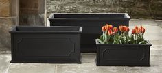 Hampshire Poly Window Box Polyethylene Planters in Black by Campania International