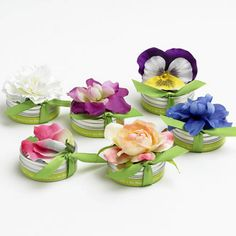 BloemBox Tiny Tins Plantable Seed Favors by Beau-coup