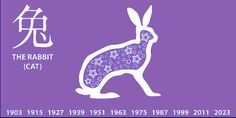 This Aquarian zest for novelty in the guise of hardware dovetails nicely with your Rabbit-inspired couch potato tendencies, and will render you flabby unless you work at getting a bit of track time in on weekends.   Aquarius Rabbit /Cat: Chinese : -Zodiac Sign born in Rabbit year: 1915, 1927, 1939, 1951, 1963, 1975, 1987, 1999, 2011, 2023