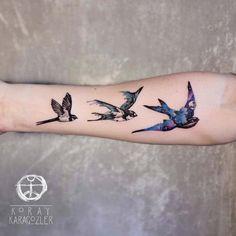 Space swallows by Koray Karagozler
