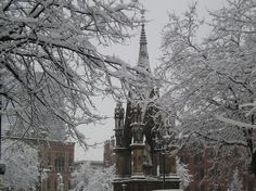 Albert Square, Manchester - winter 2010