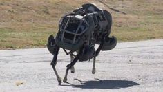 WildCat, The Galloping Robot Animal and Future Soldier's Companion