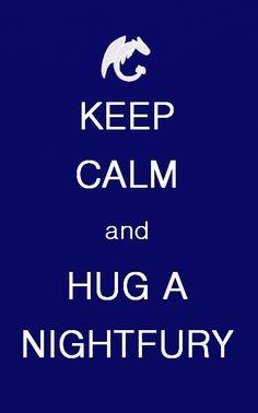 Keep Calm and Hug a Night Fury