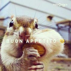 #goodmorning #felicità #cibo #food #ridere #giocare #happy #sweet #lovely #twitter #pinterest #romevaticanedenbb     www.romevaticanedenbb.com