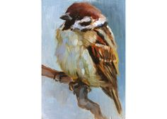 Baby Sparrow  Little Sparrow Painting  Open Edition by FinchArts, $20.00
