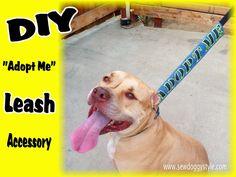 "Sew DoggyStyle: DIY ""Adopt Me"" Leash Accessory #DIY #dogleash #adopt"