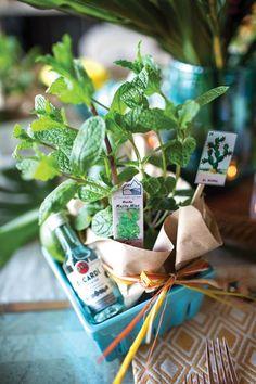 Mojito Cocktail kit - Hot Havana Nights - Monica Hart's Mojito Kit for 425 Magazine - Rachel Coward photo - Crate and Barrel Berry box
