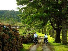 Turismo em SC: Mountain Bike no Circuito Vale Europeu – Timbó