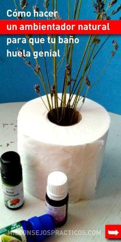 Cómo hacer un ambientador natural para que tu baño huela genial. Muy fácil!!