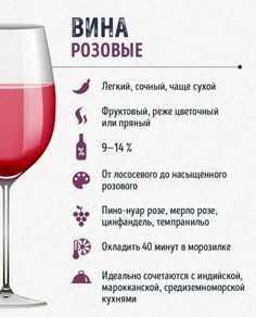 Infographic: A beginner's guide to different styles of beer Pinot Noir, Beer Infographic, Wine Descriptions, Alcoholic Drinks, Cocktails, Cocktail Recipes, Beverages, Cool Glasses, Wine Guide