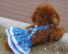 Cheap 1 unids/lote cachorro moda chaleco de mezclilla faldas perros gatos del tutú del verano vestido de perrito traje de suministros de mascotas ropa para perros XXS XS sml XL, Compro Calidad Vestidos para perro directamente de los surtidores de China:                  &