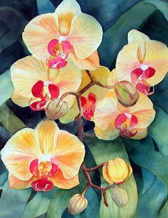 «Orchid» de Ann Mortimer