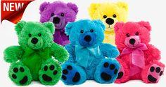 Bright teddy bears $6.99