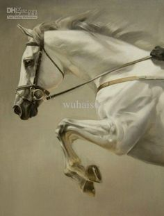 Wholesale Animal Oil - Buy Handcraft Animal Oil Painting on Canvas-A White Horse 34, $53.26 | DHgate