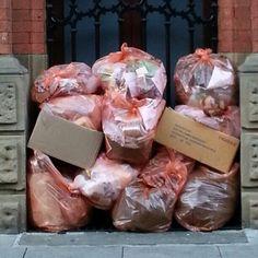 Rubbish !