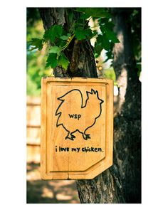 Widespread Panic, i love my chicken, carved wooden sign. by amboudaho on Etsy, $20.00