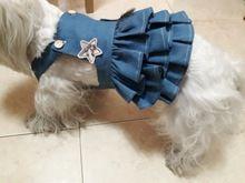 Personalize Vestidos de Design Vestido de Cão de Estimação Saia Jeans Saias gato Suprimentos de Vestuário XS-XL Cão Vestuário Animal de Estimação para Poodle de Pelúcia Loja Online | aliexpress móvel