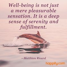 Well-Being is More Than Just Feeling Good…Matthieu Ricard
