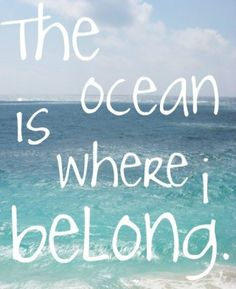 The ocean is where I belong- EXACTLY! I want to live on the ocean so I can read and run there. The Ocean, Ocean Ocean, Ocean Life, Ocean Deep, Pacific Ocean, Citations Photo, Summer Beach Quotes, Beach Sayings, Ocean Sayings