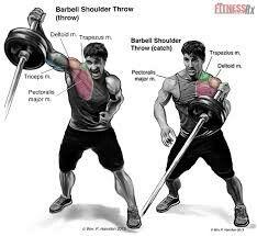 Barbell shoulder workout