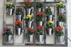 Who said that you need big yard or gardens to fulfill your desire of having lovely flowers and plants? The vertical garden design does not require