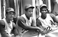 Oakland Athletics Campy Campaneris, Diego Sugui, and Alan Lewis....(1970 photo/Ron Riesterer)