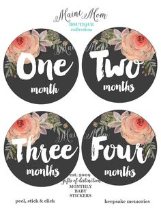 FREE GIFT Baby Girl Monthly Stickers Month by MaineMomBoutique