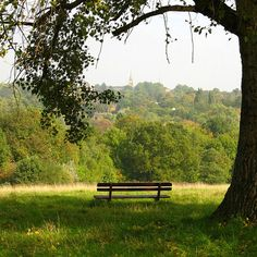 Hampstead Heath. | 17 Perfectly Lovely London Picnic Locations