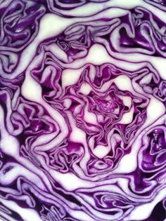 Cross section of red cabbage. I'd like to collect lots of fruit and vegetables…