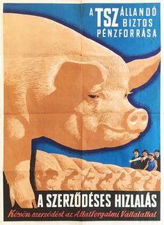 Budapest Poster Gallery is based in Budapest, Hungary, dealing in all kinds of original vintage posters and ephemera, offering worldwide shipping. Retro Posters, Vintage Posters, Movie Posters, Retro Signage, Illustrations And Posters, Hungary, Budapest, Advertising, Communism