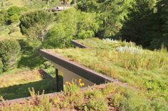 homes with green roofs - Google Search
