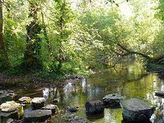 Kearnsey Abbey Gardens