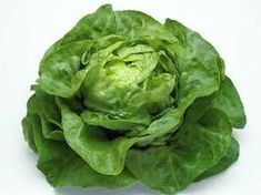 Shop for Lettuce seeds by the Packet or by the Pound.Com offers Hundreds of Seed Varieties, Including the Finest and Freshest Vegetable and Herb Seeds Anywhere. California Agriculture, Lactuca Sativa, Chou Rave, Lettuce Seeds, Potager Bio, Seeds Online, Seeds For Sale, Herb Seeds, Salad Bar